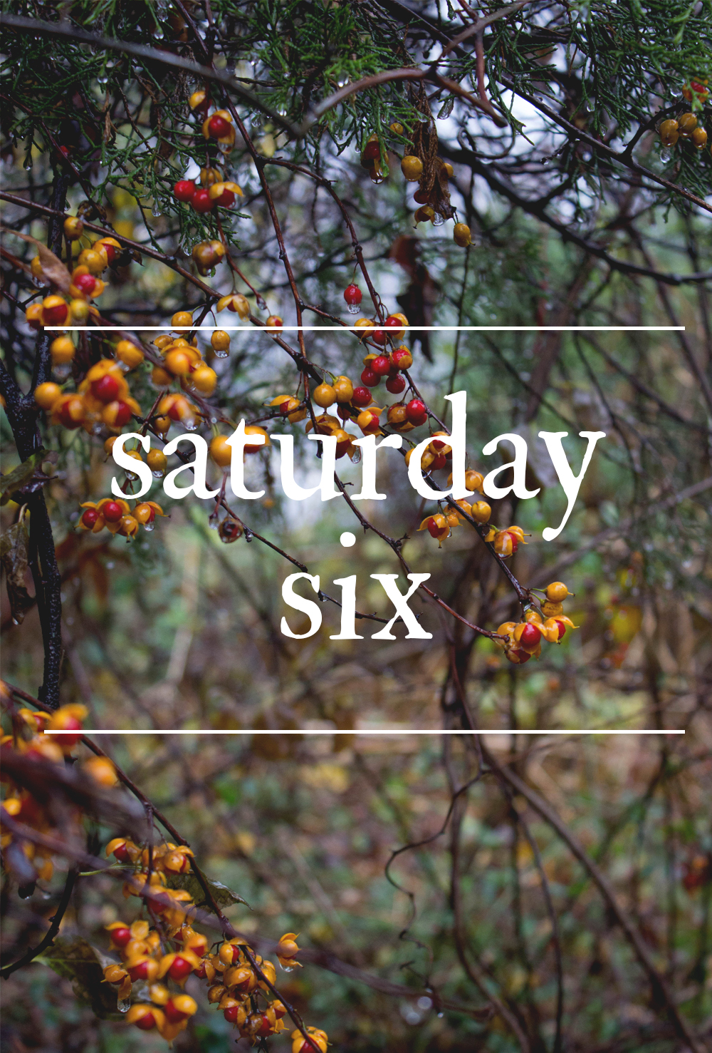 The Saturday Six | SoulBeet